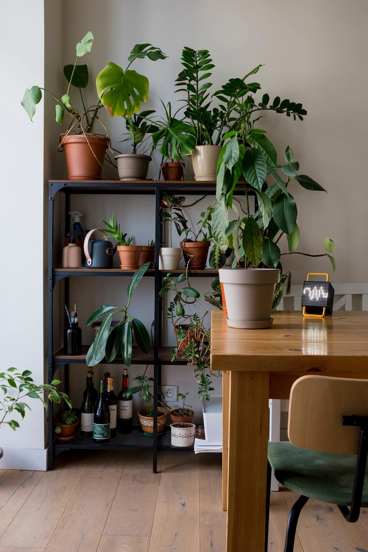 המגפה והשפעותיה: איך עיצוב הבית מושפע מהמציאות החדשה