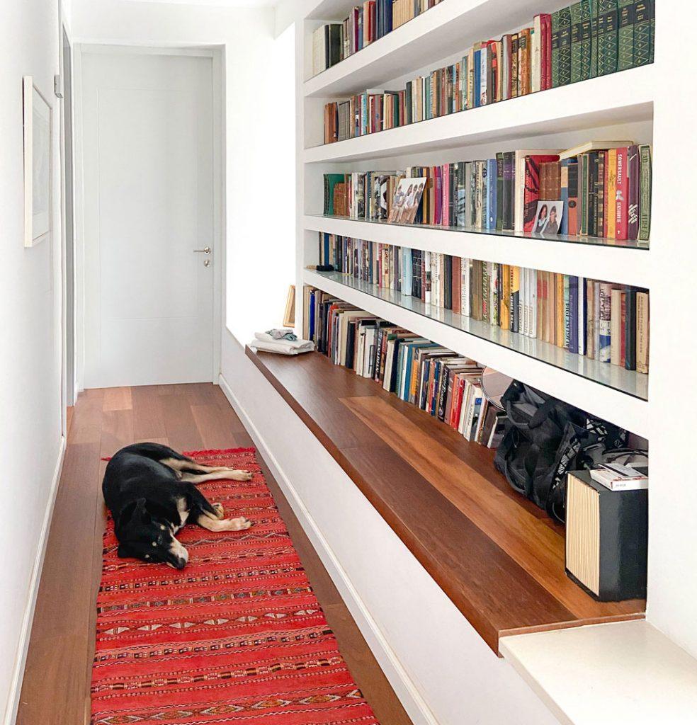 כלב על שטיח לצד ספריה